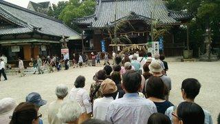 諏訪神社茅の輪くぐり